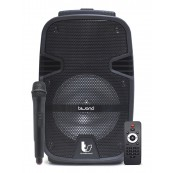 SELF-AMPLIFIED SPEAKER 250W 8 ThunderSound Biwond - Inside-Pc